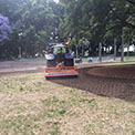 Photo of the Hyde Park re-turf project